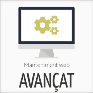 Manteniment web avançat
