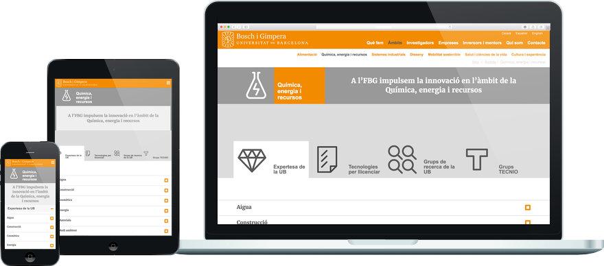 Fundació Bosch i Gimpera programació plantilla web a mida i maquetació contingut exemple 4